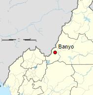 Projet CC38 – Ouvrages de captage et passerelle à Banyo